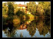 Продаются земля и дом в деревне Заречный Вишур Шарканского района.